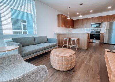 Furnished Living Room of an Apartment at Stateside